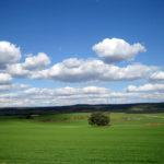 Reflexiones para después del confinamiento (Las ventajas de vivir en el pueblo)