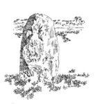 La Piedra del Tolmo: un posible menhir prehistórico